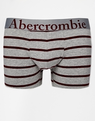 Abercrombie And Fitch Trunks In Stripe Grey