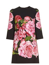 Dolce And Gabbana Rose Print Cady Mini Dress Black Multi