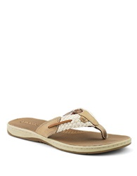 Sperry Parrotfish Braided Thong Sandals Beige