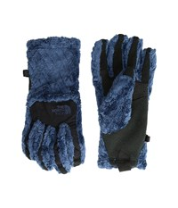 The North Face Women's Denali Thermal Etip Glove Shady Blue Basketweave Embossed Extreme Cold Weather Gloves