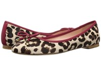 Kate Spade Willa Blush Brown Leopard Haircalf Print Red Chestnut Nappa Women's Slip On Shoes Animal Print