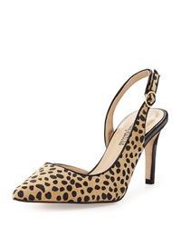 Neiman Marcus Shely Suede Slingback Pump Brown Dalmatian