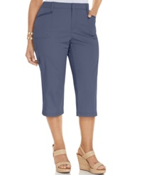 Lee Plus Size Capri Pants China Blue