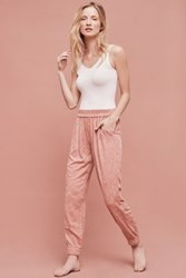 Anthropologie Versa Embroidered Jogger Rose