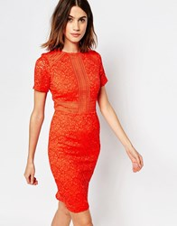 Warehouse Panelled Lace Dress Coral Orange