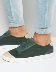Pointer Richard Plimsolls Green