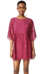 Plenty By Tracy Reese Cher Lace Dress Fig