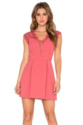 Bcbgeneration Lace Inset Cocktail Dress Coral