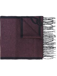 Brioni Fringed Scarf Pink And Purple
