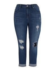 Melissa Mccarthy Seven7 Plus Rolled Skinny Jeans Blue