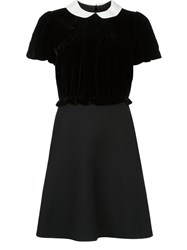 Valentino Bimaterial Contrast Collar Dress Black