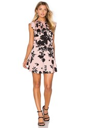 Karina Grimaldi Kaiya Print Mini Dress Blush