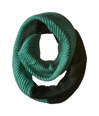 The North Face Hudson Scarf Darkest Spruce Deep Sea Scarves Green