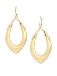 Alexis Bittar Lucite And 10K Gold Plated Drop Earrings