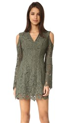 Keepsake Porcelain Lace Dress Khaki
