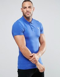 Asos Muscle Fit Polo With Embroidery In Baleric Baleric Blue