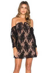 Line And Dot Coco Lace Tube Dress Black