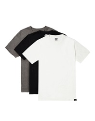 Dickies Staple T Shirt 3 Pack