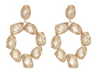 Tory Burch Stone Abstract Wreath Earrings Pink Blossom Vintage Gold Earring