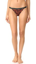 Love Stories Wild Rose Bikini Briefs Red Clay