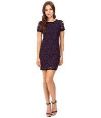 Donna Morgan Short Sleeve Easy Shift Lace Dress With Combo Amethyst Women's Dress Purple
