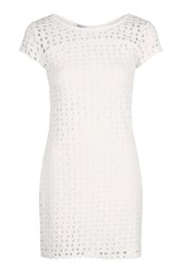 Wal G Perforated Polka Dot Tuni Dress By Cream