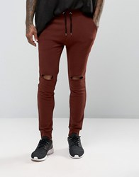 Asos Super Skinny Joggers With Knee Rips In Dark Red Chestnut
