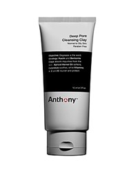 Anthony Logistics For Men Anthony Deep Pore Cleansing Clay No Color