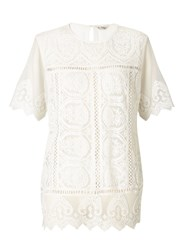 Miss Selfridge White Lace Scallop Tee Ivory