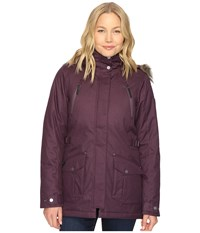Columbia Barlow Pass 550 Turbodown Jacket Dusty Purple Women's Coat