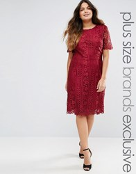 Truly You Premium Lace Overlay Shift Dress Burgundy Red