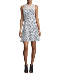 Carolina Herrera Sleeveless Sheer Yoke Lace A Line Dress Ivory