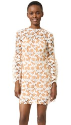 Cynthia Rowley Two Tone Lace Dress White Nude