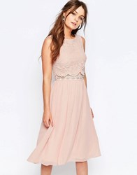 Elise Ryan Skater Dress With Scallop Lace Overlay Nude Pink