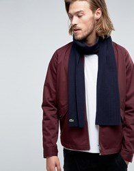 Lacoste Wool Scarf In Navy Navy