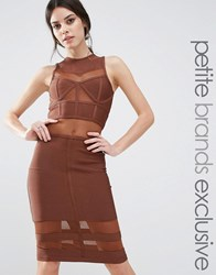 True Decadence Petite Bandage Midi Dress With Mesh Inserts Brown