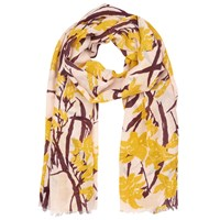 Whistles Lily Scarf Multicolour