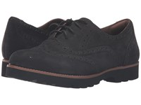 Santana Earthies Black Soft Buck Women's Lace Up Wing Tip Shoes