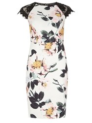 Dorothy Perkins Floral Printed Pencil Dress White