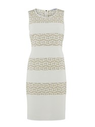 Gina Bacconi Flower Embroidered Contrast Band Dress Gold