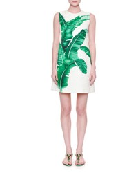 Dolce And Gabbana Sleeveless Banana Leaf Shift Dress White Green Foglie Banano F.B