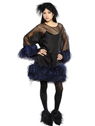 Gianluca Capannolo Feather Embellished Silk Organza Dress