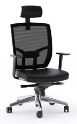Bdi Task Chair 223 Leather