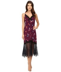 Rebecca Taylor Bellflower Print Slip Dress Plum Combo Women's Dress Purple