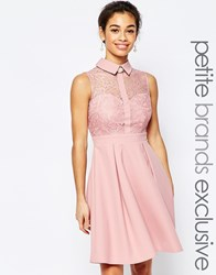 Paper Dolls Petite Lace Prom With Collar Detail Blush