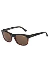 Lacoste Sunglasses Black Striped