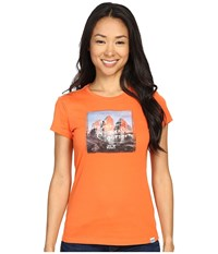 Jack Wolfskin Sunset Mountain T Shirt Watercress Blossom Women's T Shirt Gray