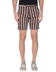 Imperial Star Imperial Bermudas Dark Brown