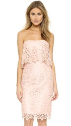 Black Halo Ronna Lace Dress Ballet Pink