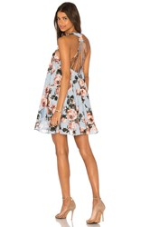 Lucy Paris Rose Burnout Dress Blue
